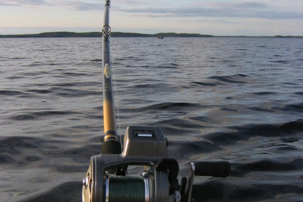 Best Fishing Lines for Trout Trolling